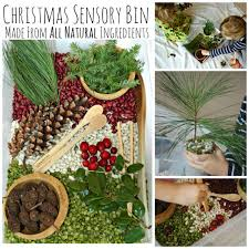 All Natural Flower Food All Natural Christmas Sensory Bin What Can We Do With Paper And Glue