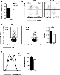 mycose b b si ge t cell restricted notch signaling contributes to pulmonary th1 and