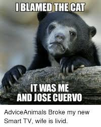 Jose Cuervo Meme - i blamed the cat it was me and josecuervo adviceanimals broke my