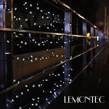 Outdoor Solar String Lights Patio Solar String Lights Lemontec 200 Led Holiday String Lighting
