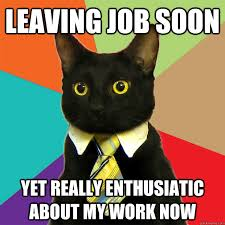 Cat Soon Meme - leaving job soon cat meme cat planet cat planet