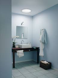 bathroom with vessel sink and tubular skylight different types