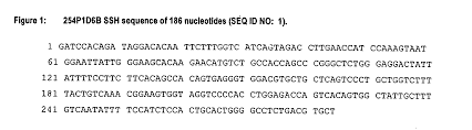 patent us20040214212 nucleic acids and corresponding proteins