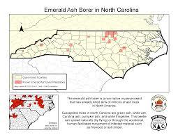 Emerald Ash Borer Map The Emerald Ash Borer Becoimg A Local Threat