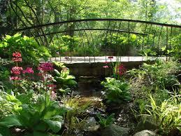 Asian Garden Ideas Garden Asian Garden Plants