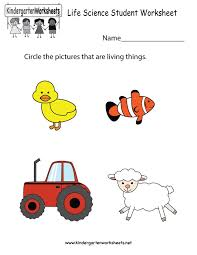 42 best science worksheets and more images on pinterest science