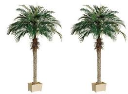 two 68 inch artificial silk palm trees potted plants