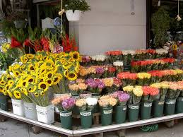 floral shops 8 best flower shops in new york city prestige car rental nyc