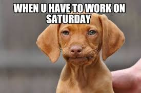 Working On Saturday Meme - 10 funny saturday memes that capture real feelings of the weekend