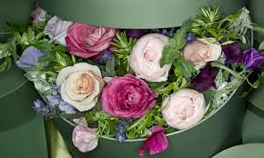 Monthly Flower Delivery Observer Magazine Competition Win A Monthly Delivery From The