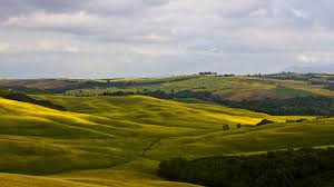 italy green field tuscany nature wallpaper