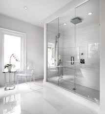 chicago shower door handles bathroom traditional with ceiling