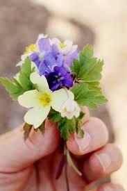 Flowers For Mom 340 Best U2022 U2022pra Você U2022 U2022 Images On Pinterest Flowers