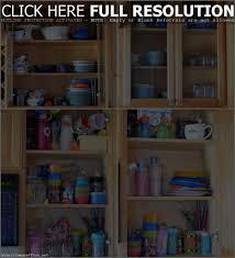 Organize Kitchen Cabinets Cabinet How To Organize My Kitchen Cupboards Best Organizing