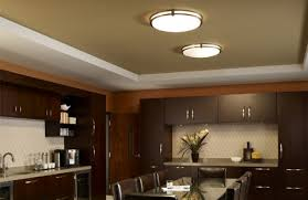 Ceiling Light Ceiling Lights Hayneedle