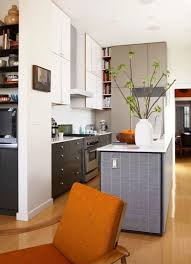 Kitchen Renovation Ideas 2014 195 Best Kitchen Images On Pinterest Kitchen Ideas Kitchen And