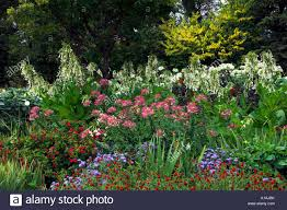a variety of annual blooming flowers in the english gardens of the