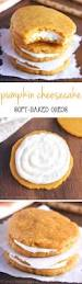 best 25 no bake pumpkin cheesecake ideas on pinterest no bake