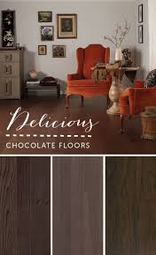 Laminate Flooring Tampa Fl 59 Best Color Journey Chocolate Images On Pinterest Chocolate