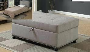 Ottoman Sleepers Ottoman Sleeper Bed Etechconsulting Co