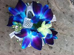 blue orchid corsage 27 best flowers images on prom flowers prom corsage