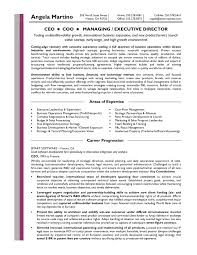Best Ceo Resumes by Presidentceo Resume Samples Next Resume Sample Business