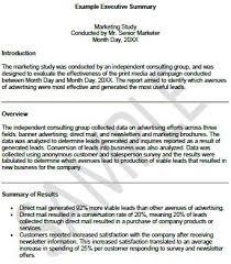 13 executive summary templates excel pdf formats