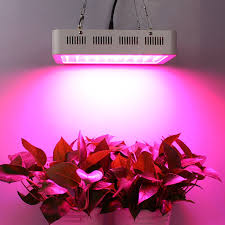 Indoor Plant Light by Top 10 Best Led Grow Lights Review My Home Product Usa