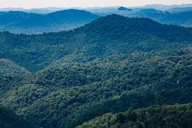 Kentucky Mountains images Building our future together in appalachia appalshop jpg