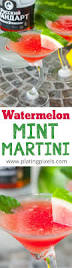 martini watermelon best 25 watermelon liquor ideas on pinterest watermelon vodka