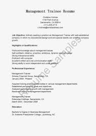 resume sle for management trainee positions trainee resume 28 images trainee ingenieur cv beispiel