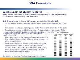 dna fingerprinting worksheet free worksheets library download