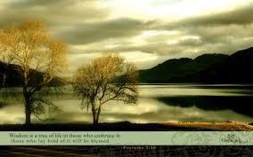 beautiful proverbs desktop mobile wallpaper free backgrounds