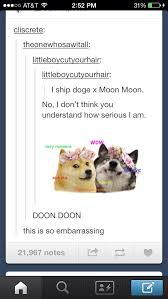 Doge Meme Tumblr - drawn titanic doge pencil and in color drawn titanic doge
