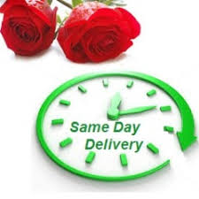 same day delivery gifts gifts flowers cakes to send chennai on any occasion from any