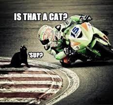 Motorcycle Meme - motorcycle meme visordown