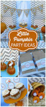 Halloween 1st Birthday Party Invitations Best 20 Pumpkin Birthday Parties Ideas On Pinterest Fall