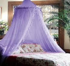 Girls Princess Canopy Bed by 17 Best Girls Bedroom Ideas U0026 Canopies Images On Pinterest