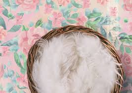 digital backdrops newborn basket on painted floral background newborn digital