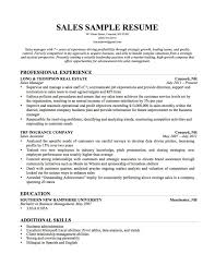 Sales Position Resume Examples by Insurance Sales Objective Resume