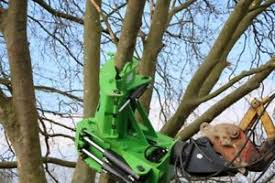 16 inch cut rsl tree shear with grab and 360 rotator fit 13t