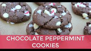 delicious christmas cookie recipe healthy stress free holiday