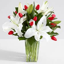 white lillies white lilies proflowers