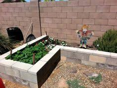 2 u0027 x 8 u0027 elevated cedar planter box above ground planting beds