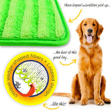 Best Microfiber Mop For Laminate Floors Buy Cleaning Mop Spray Mop Online Microfiber Mop U2013 Turbo