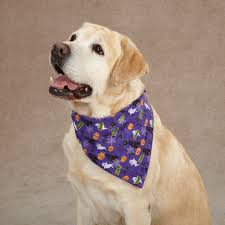 hipinion view topic thread for dogs wearing bandanas