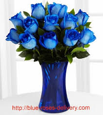blue roses for sale 10 best flowers i like images on beautiful flowers