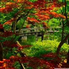 wallpaper za laptop japanese garden kyoto 4k hd desktop wallpaper for 4k ultra hd