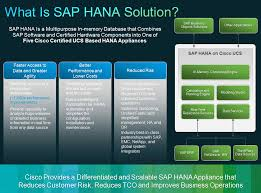 Sap Hana Resume Sap Hana On Cisco Ucs Sap Hana Tutorials Free S 4 Hana