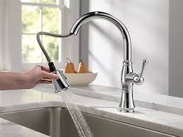 Delta Single Hole Kitchen Faucet by Delta Faucet 9197 Dst Cassidy Single Handle Pull Down Kitchen